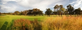 16th green & grass panorama