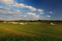 11th green The Sands