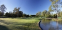 15th-hole-tree-lake-2
