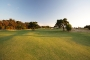 13th-fairway-with-trees