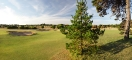 14th-hole-under-trees-2