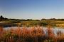 15th green Creek Course – Par 3