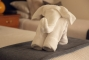 BHGC_elephant-towell