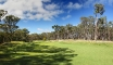 14th-hole-panorama Forest Resort